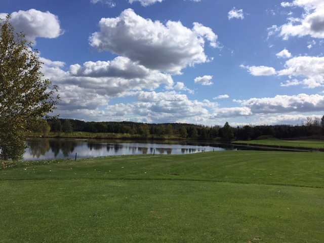 BMWとゴルフ
